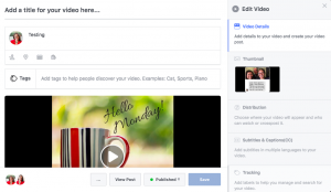 The Edit Video window allows you to make numerous changes to the post.